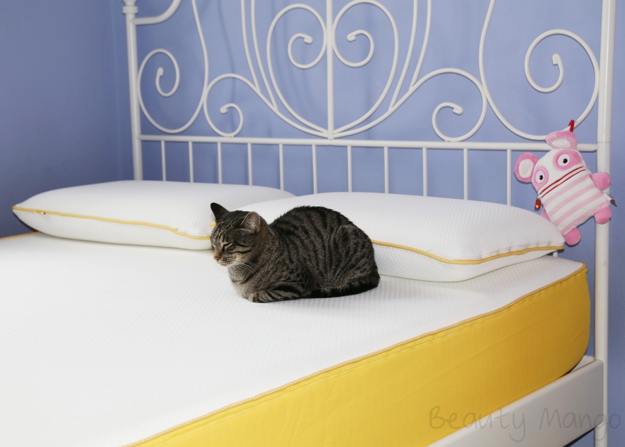 besser schlafen mit der eve matratze beauty mango. Black Bedroom Furniture Sets. Home Design Ideas